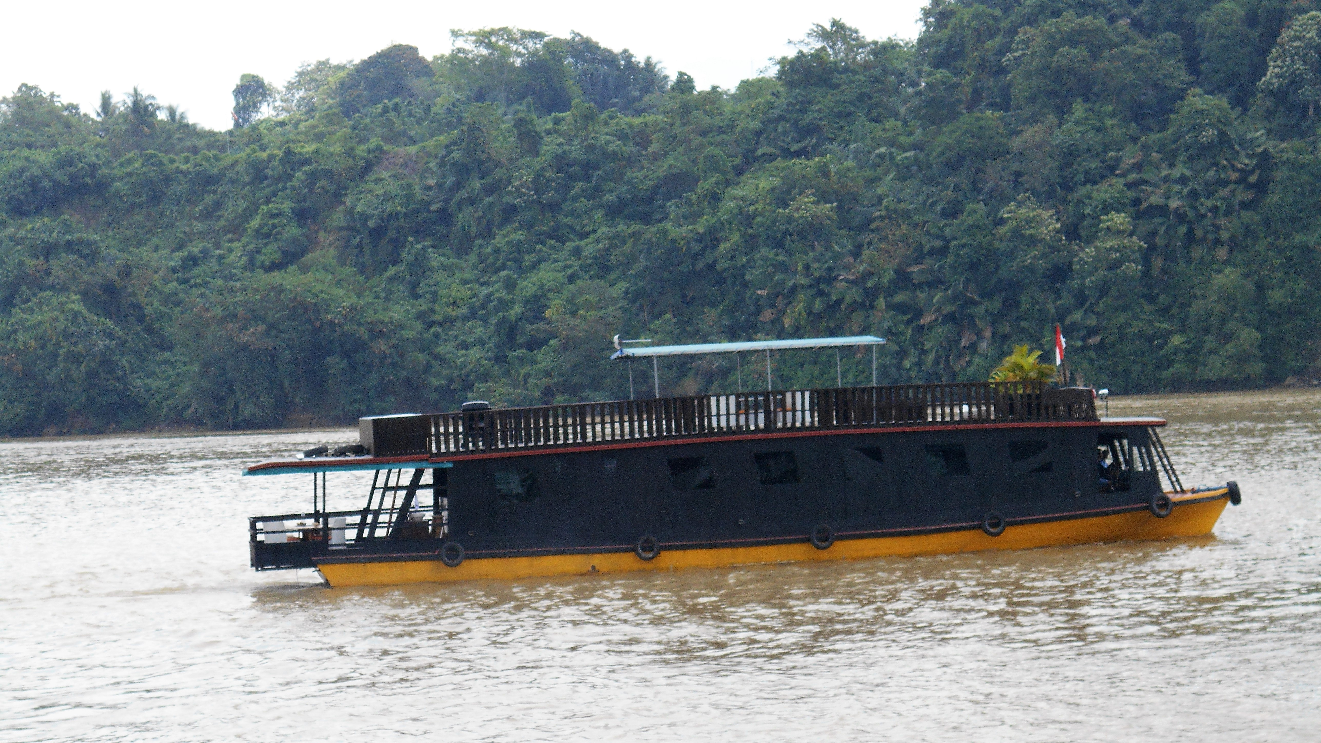mahakam, river, cruise, luxury, yacht, houseboat, orangutan, tour, borneo, kalimantan, trip, journey, cruise, wildlife, jungle, forest, rain forest, travel, canoe, river, flora, fuana, guide, car, safari, indonesia