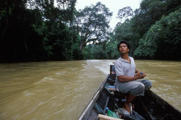 kalimantan, borneo, indonesia, dayak, jungle, trek, rain forest, forest, dayak, culture, tour, trip, wildlife, safari, expedition, guide